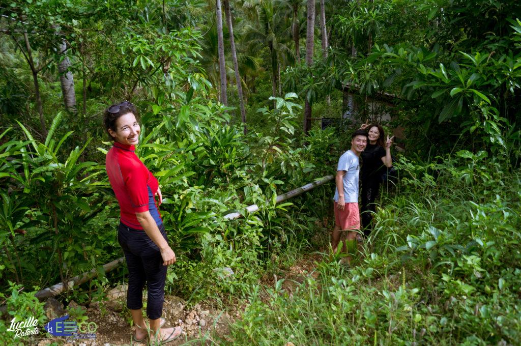シキホールの熱帯雨林