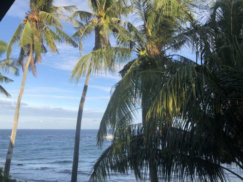 ドゥマゲッティから15キロ離れたダーウィンのビーチ