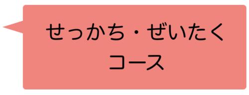 オンラインでの発音矯正英語レッスン・贅沢コース