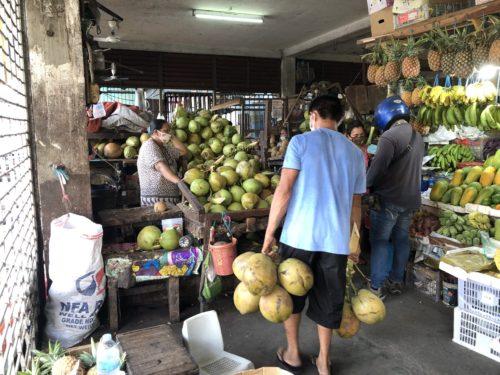果物マーケットのココナッツ