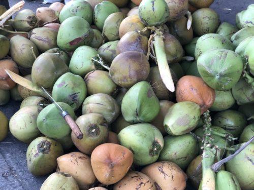 大量のココナッツ
