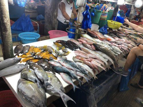 ドゥマゲッティ市場 魚り場2