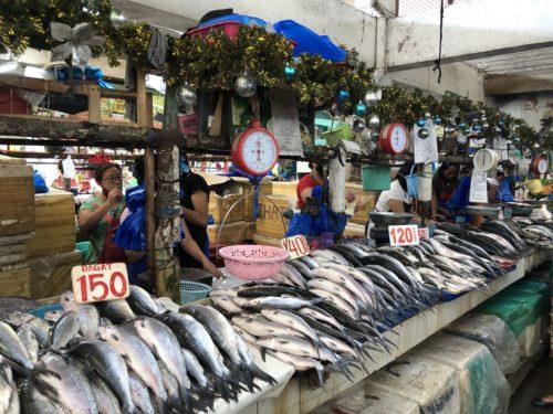 ドゥマゲッティ市場 魚り場