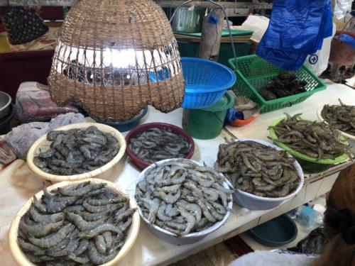 ドゥマゲッティ市場 海老売り場